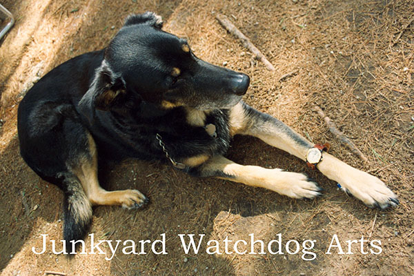 The famous Junkyard wearing his watch
